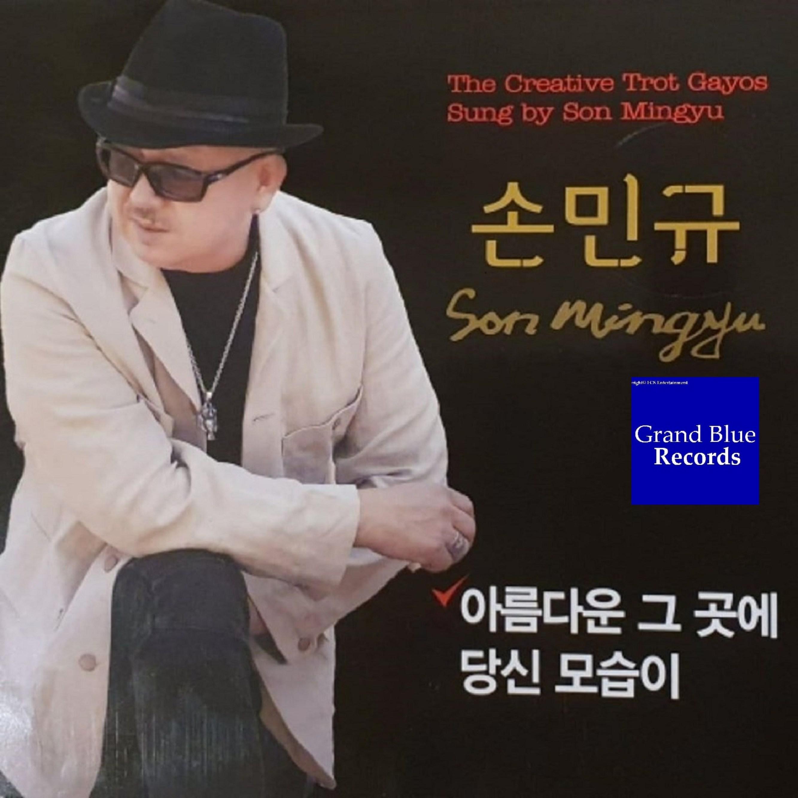 韓国トロット歌手 / SON MIN GYU / 美しい…